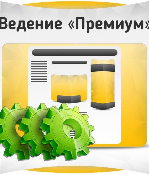 Ведение группы ВКонтакте - Премиум