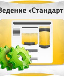 Ведение группы ВКонтакте - Стандарт